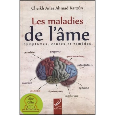 Les maladies de l'âme (French only)